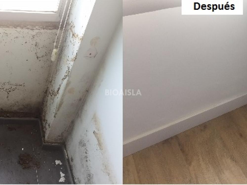 El antes y el después de una pared con humedades