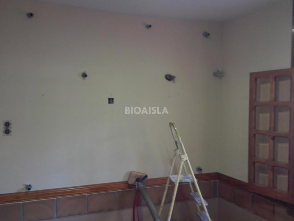 Trasdosado acústico de celulosa Granada